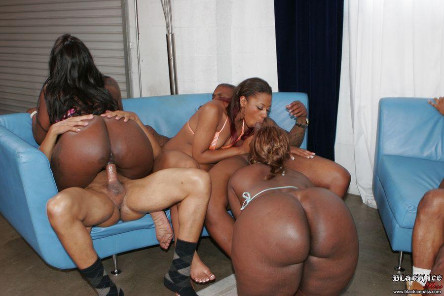 Opposite. black ass orgies