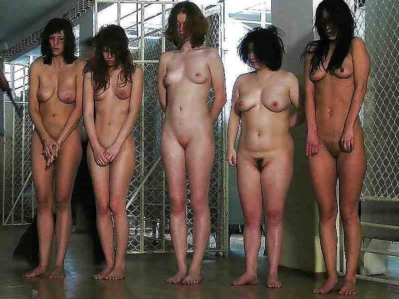 Sorry, Auction naked slave girls nude are not