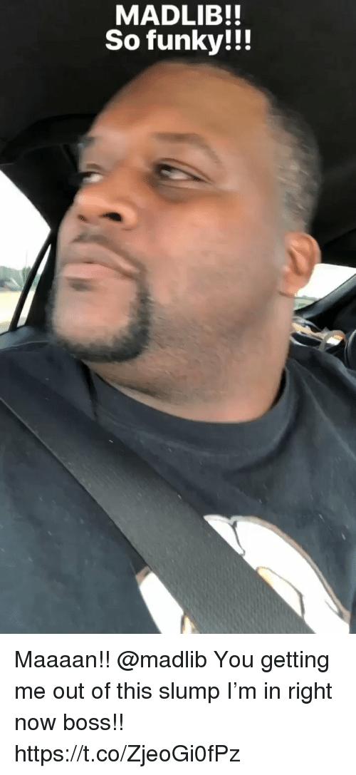 Free vids of voyeur driving