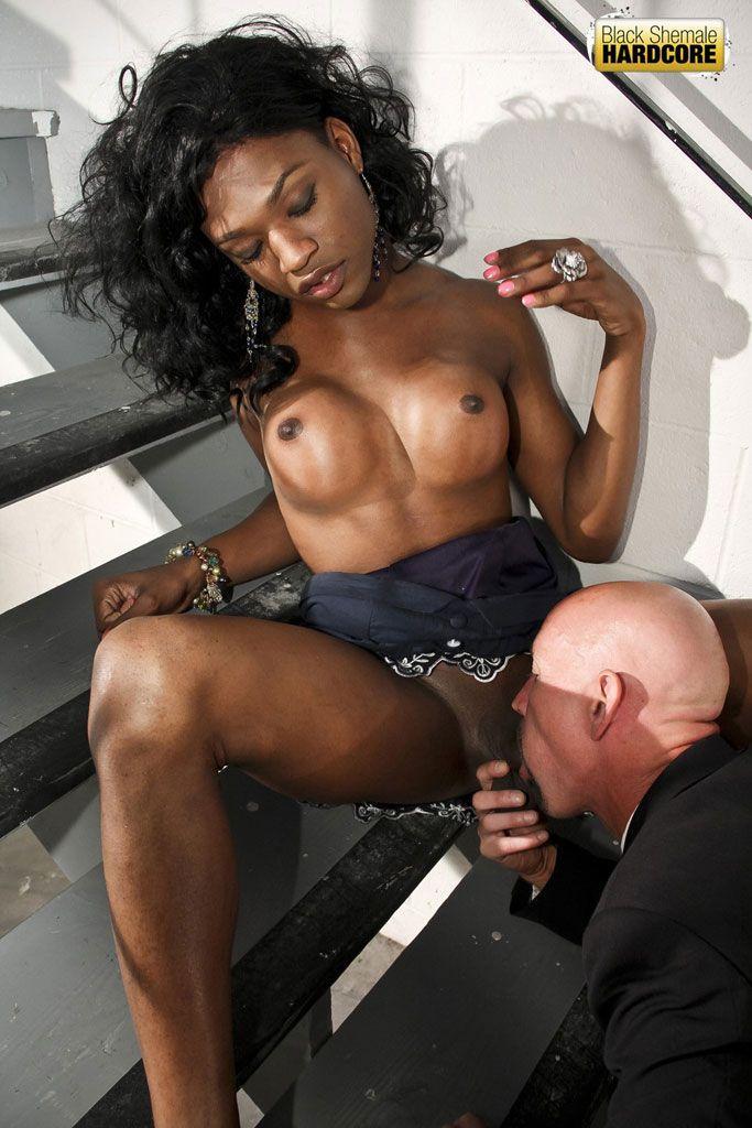 Dick dick black tranny