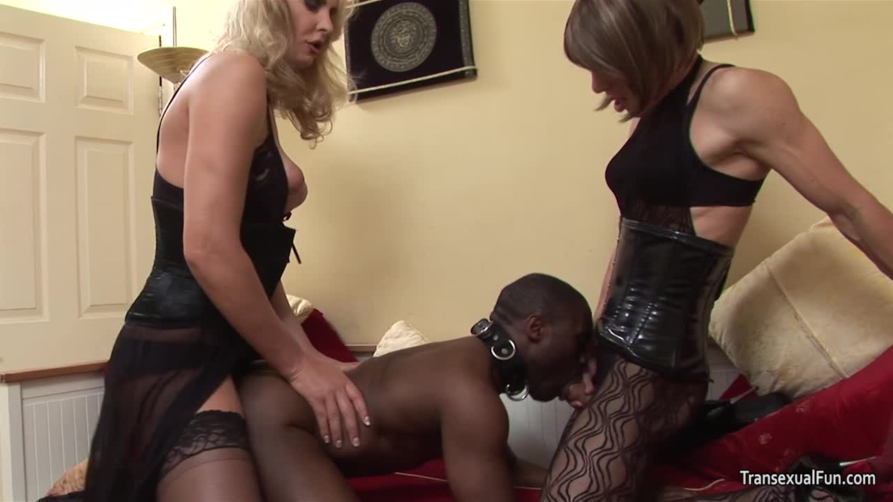 from Eden free black shemale vids tgp