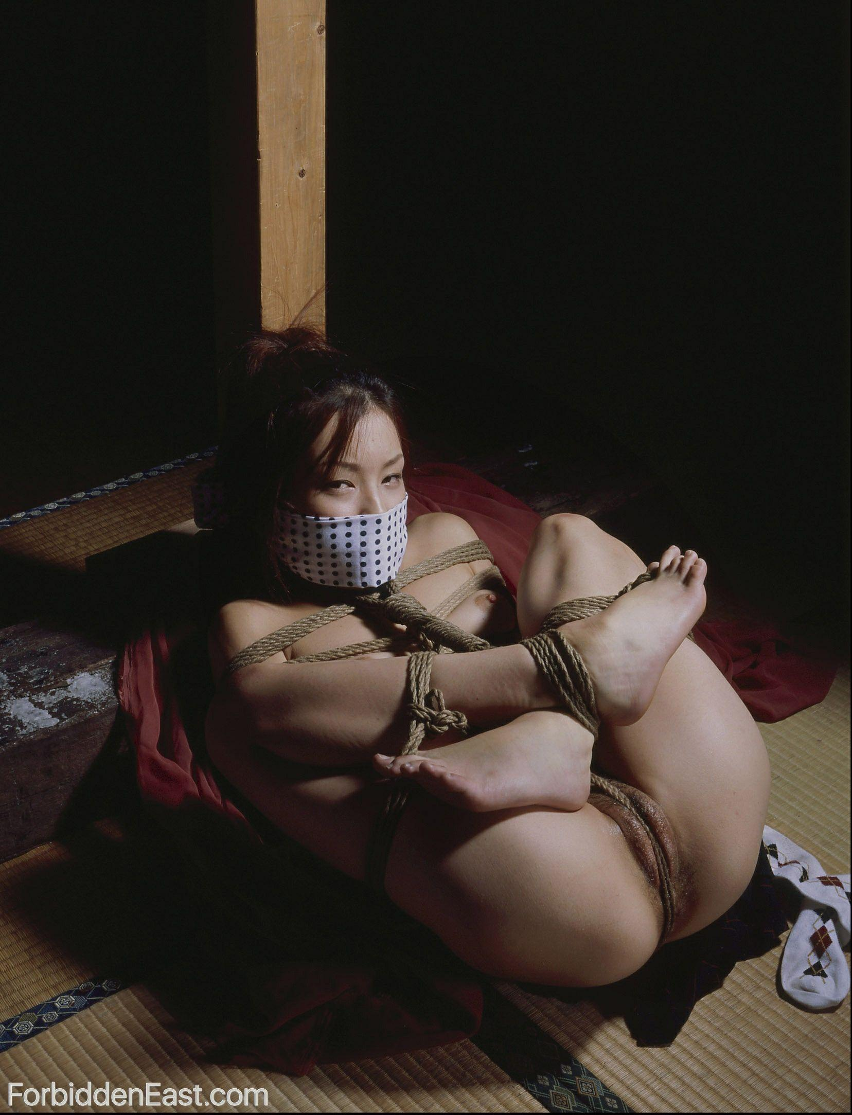 Picture japanese rope bondage dress matchless theme