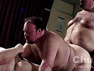 Suggest free chubby bear porn videos
