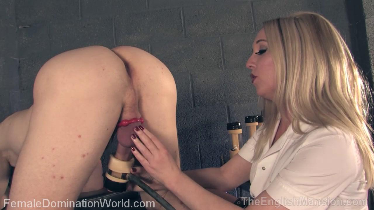 femdom pornos